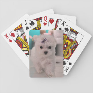 Maltese Puppy, JC, Playing Cards