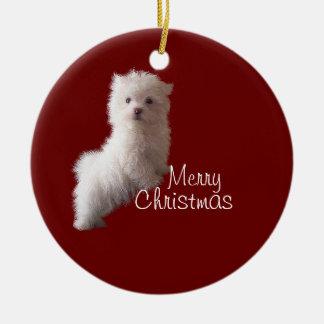 Maltese Puppy Red Ornament