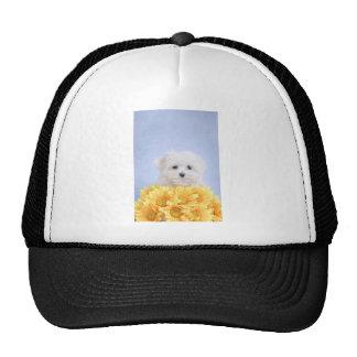 Maltese puppy trucker hat