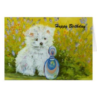 Maltese puppy - yellow card