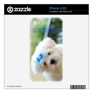 Maltese Puppy Zazzle Skin Skins For iPhone 4S