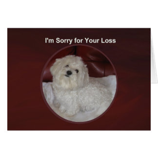 Maltese Sympathy Card for Pets or People