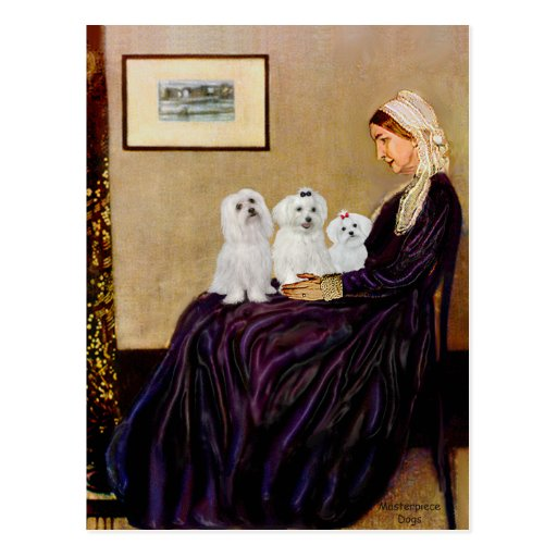Maltese (three) - Whistlers Mother Postcard