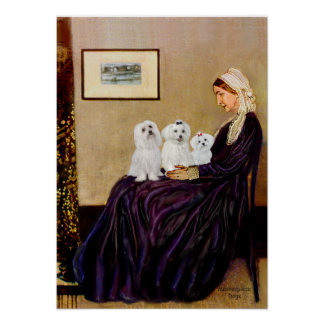 Maltese (three) - Whistlers Mother Posters