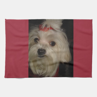 Maltese with Red Bow Hand Towel