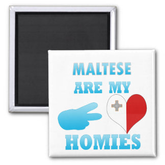 Malteses are my Homies Refrigerator Magnet