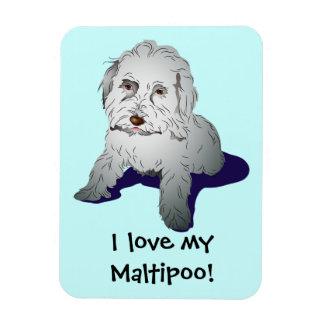 Maltipoo Cute Puppy Magnet
