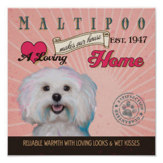 Maltipoo Dog Art Poster- Makes Our House Home