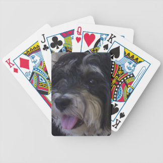 maltipoo pack of cards