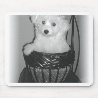 MaltiPoo Products Mouse Pad