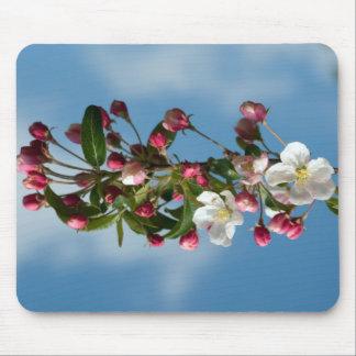 Malus Floribunda apple flowers Mouse Pad