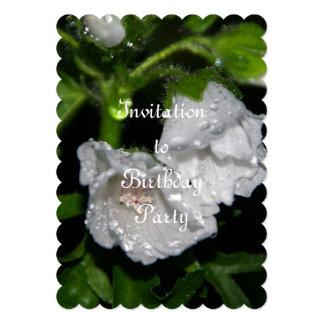 Malvales Card