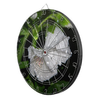 Malvales Dartboard With Darts