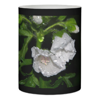 Malvales Flameless Candle