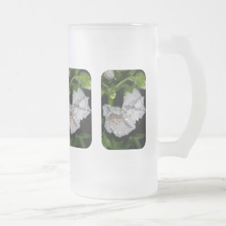 Malvales Frosted Glass Beer Mug