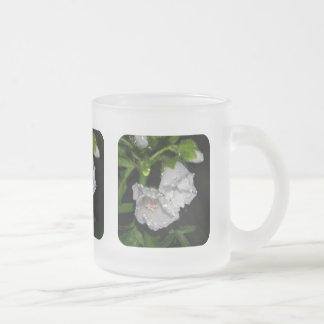 Malvales Frosted Glass Coffee Mug