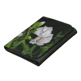Malvales Leather Wallets