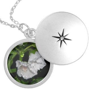 Malvales Locket Necklace