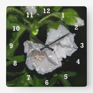 Malvales Square Wall Clock