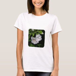 Malvales T-Shirt