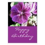 Malve -happy birthday grußkarten