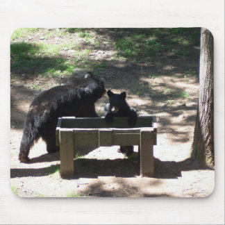 Mama and baby bears mouse pad