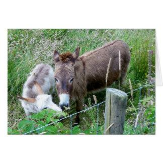 Mama and Baby Donkey Greeting Card