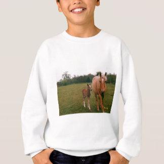 Mama and baby horse sweatshirt