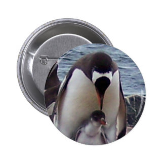 Mama and Baby Penguin 2 Inch Round Button