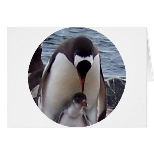 Mama and Baby Penguin Card