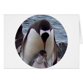 Mama and Baby Penguin Greeting Card