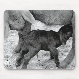 Mama & Baby Goat Mouse Pad
