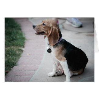 Mama Beagle Card