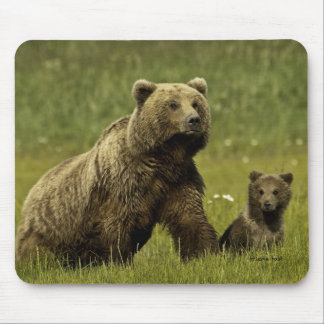 Mama bear and cub mouse pad