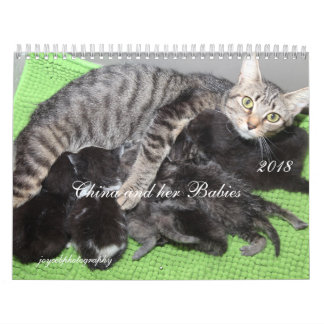 MAMA CAT AND HER BABIES 2018 CALENDAR