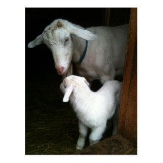 Mamá con la postal de la cabra del bebé
