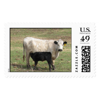 Mama Cow Postage Stamp