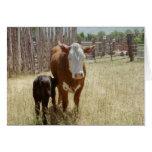 Mamá Cow y becerro Tarjeta