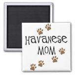 Mamá de Havanese Imán Para Frigorífico