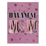MAMÁ de Havanese Postal