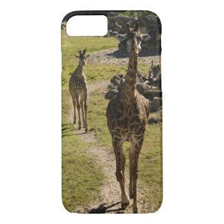 Mamá de la jirafa y becerro de la jirafa del bebé funda iPhone 7