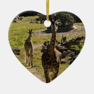 Mamá de la jirafa y becerro del bebé