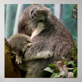 Mamá de la koala y nuevo bebé póster