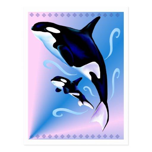 Mamá de la orca y postal del bebé