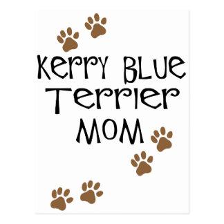 Mamá de Terrier de azul de Kerry Postales