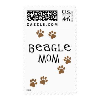 Mamá del beagle