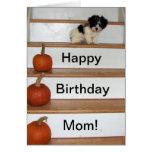 Mamá del feliz cumpleaños - perrito y calabaza Hav Tarjeton