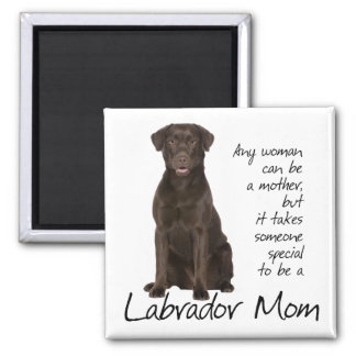 Mamá del laboratorio del chocolate imán cuadrado