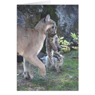 Mamá del puma y tarjeta de Cubs