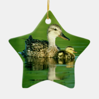 Mama duck and baby christmas tree ornament
